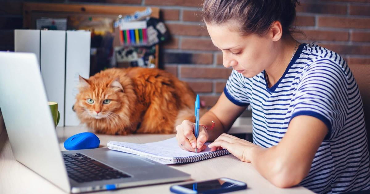 Lady on a conference call with her orange cat looking on