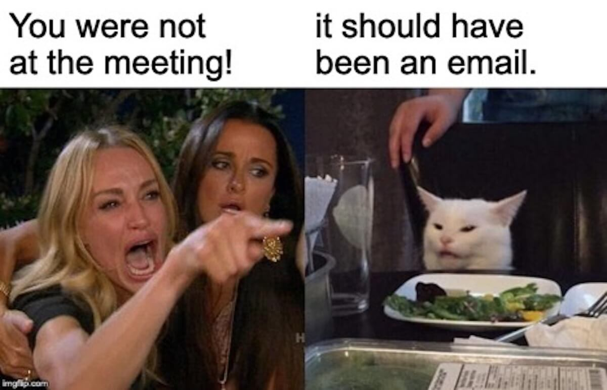 Meme that says You were not at the meeting. It should have been an email.