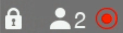 recording icon shown during a Lifesize conference call